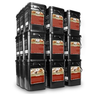 Wise 4320 Serving Package of Long Term Survival Food